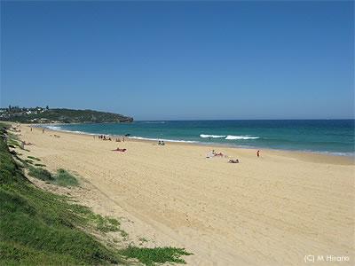 Curlcurl_beach